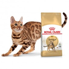Сухой корм Royal Canin Adult Bengal 0.4 кг.
